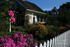 Cape Cod Gardens | English Garden On Cape Cod Photograph - English Garden On Cape Cod ...