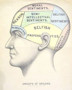 Vintage Surreal Print Phrenology Chart by missquitecontrary, $25.00