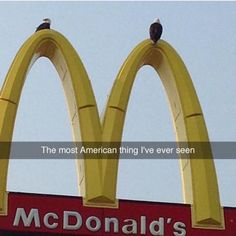 It's hard to see these 2 America af bald eagles up there texting or tweeting who knows. But this the sad truth McDonald's is outselling healthier choices by far. #getittogetherpeople #poison #diabetes #diabeticbodybuilder #diabetic by jaytitan