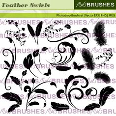 An elegant set of baroque swirls embellished with feathers, ivy and butterflies