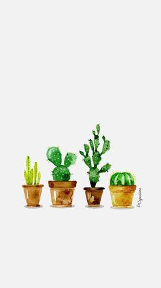 Fond d'écran #cactus La Capuciine (Pour Water Drawing)