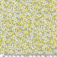 Liberty Ffion jaune coloris B 20 x 137 cm