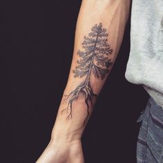 pine tree tattoos More