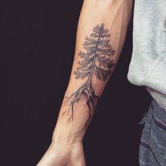 pine tree tattoos More (Vegan Tattoo Male) Pine Tattoo, Tree Tattoo Arm, Tattoo Forearm, 100 Tattoo, Trendy Tattoos, Small Tattoos, Tattoos For Women, Tattoos For Guys, Vegan Tattoo