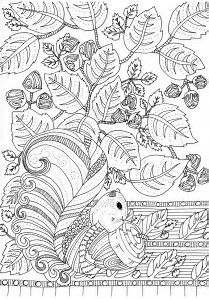 Free Printable Difficult Grown Up Coloring Pages Autumn Beautiful Drawings Adult Drawing Creative Leisure