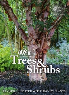 The Hillier manual of trees & shrubs. 8th ed. 2014. Shelf location: HORT (for reference use in the library only). Also a copy in Garden Supervisors' Office and a copy on order for the Trainees' Library.