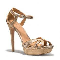 The Daylan Heel from Coach