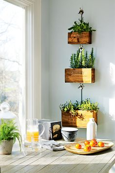 Cute idea, and I like the way they are hung with the long hook. Don't know if they would grow well long term in this example, unless that's a south-facing window that gets a lot of exposure, those are herbs that like a lot of bright sun.