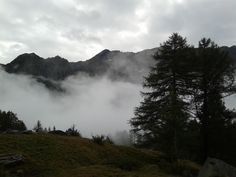 I was uncertain if trekking or not this morning, due to drizzle & fog. Then I choose to go. Good decision or not? This was scenery at 2000 m, Ca Bianca. (Parco Nazionale Del Gran Paradiso)