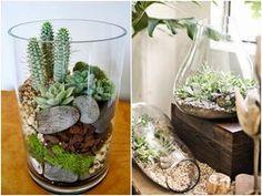 DIY - Jak zrobić ogród-terrarium? Plant Design, Diy Bedroom Decor, Home Decor, Air Plants, Houseplants, Interior Design, Terrariums, Diy Wood, Wood Working