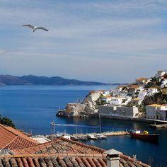The Island of Hydra, Greece ⚬.  ⚬  Η Πανέμορφη Ύδρα ⚬  @vardis.k  #hydra #greece.