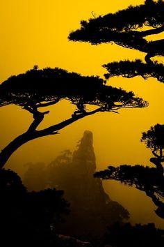 The Monterey area, Pebble Beach in the fog.
