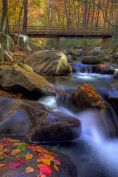 Autumn stream at Greenbrier in the Great Smoky Mountains  Photo: http://www.facebook.com/smokypics/