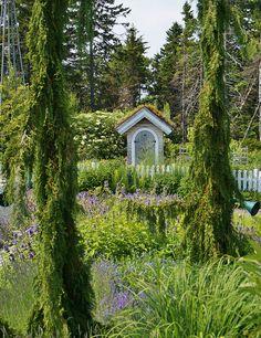 Weeping trees in the Children's Garden   Flickr - Photo Sharing!