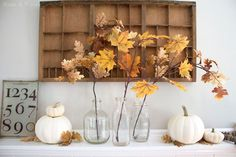 Leafy branches + white pumpkins = a simple, neutral display.