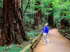 mom said we will go to this place...Muir Woods, Marin County, California