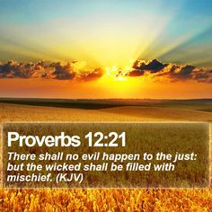 Proverbs 12:21 There shall no evil happen to the just: but the wicked shall be filled with mischief. (KJV)  #Nature #Lord #Motivational #ChristianQuotes #PhotoOfTheDay http://www.bible-sms.com/