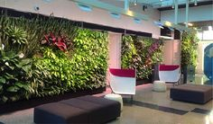 If you like to stay current on interior landscape trends, you have probably received a pretty decent introduction to green walls by now. Floor Chair, North America, Investing, Living Walls, Real Estate, Green Walls, Landscape, Interior Design, Blog Entry
