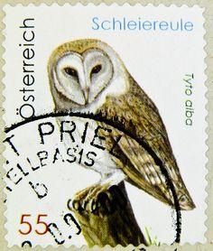 Austrian owl postage stamp