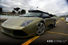 2007 Lamborghini Murcielago LP640 Roadster -   2007 Lamborghini Murcielago LP640 Roadster for   CarGurus  2007 lamborghini murciélago roadster lp640  road & track 2007 lamborghini murciélago roadster lp640 unadulterated fun. most popular. created with sketch. by patrick hong. jan 21 2007  lamborghini murcielago lp640;. Lamborghini murciélago  wikipedia  free encyclopedia Lamborghini murcielago roadster.  lamborghini recalled 428 of its 20072008 murciélago coupés and roadsters because of the…