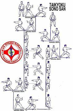 Martial Arts Styles, Martial Arts Techniques, Mixed Martial Arts, Aikido, Tai Chi, Shotokan Karate Kata, Kyokushin Karate, Martial Arts Workout, Self Defense