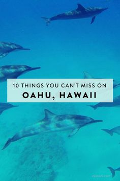 Heading to Hawaii? Here's 10 things you shouldn't miss on Oahu!