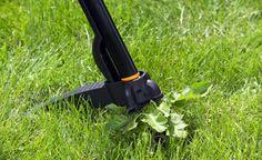 Unkraut im Rasen bekämpfen - Bei schlechter Pflege machen sich schnell Weißklee und anderes Unkraut im Rasen breit. So bekommen Sie die unerwünschten Pflanzen in den Griff.