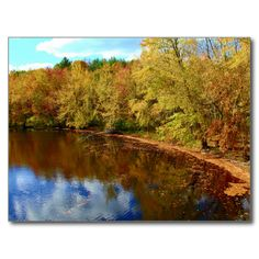 Pushaw Stream Autumn Reflections Postcard (Pkg of 8) by KJacksonPhotography --  Taken 10.10.2014 Pushaw Stream reflecting the blue and cloudy skies and the reds, oranges and yellows of the fall foilage on an autumn early afternoon.PC:232.272
