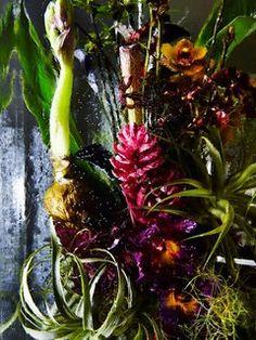 Een bloeiende samenwerking van floraten Mooiwatbloemendoen.nl