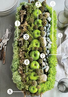 Here's what you'll need: 1. Green-and-white carnations. 2. Granny smith apples. 3. Mixed variety moss. 4. Green brunia. 5. Fuji mums. 6. River rocks. 7. Scabisoa pods. 8. Easy apple basket. The sec...