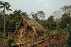 Ganaderos brasileños atacaron poblado nativo