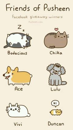 I don't know what pusheen is but i like these fat cats lol Gato Pusheen, Pusheen Love, Pusheen Unicorn, Funny Cats, Funny Animals, Cute Animals, Crazy Cat Lady, Crazy Cats, Kawaii Potato