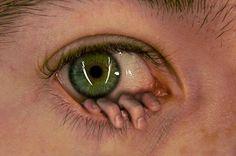 http://albarnation.com/informasi/14-kreasi-editan-photoshop-super/  Örnekler