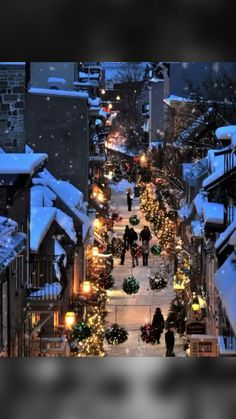 quebec city, canada in christmas time Magical Christmas, Merry Little Christmas, Winter Christmas, Christmas Lights, Christmas Time, Christmas Decorations, Canada Christmas, Christmas Shopping, Winter Snow