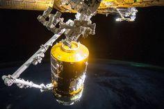 "Canada's robotic arm, with Expedition 44 astronauts @Astro_Kjell and Kimiya Yui at the controls, maneuvers Japan's resupply ship, the ""Kounotori"" HTV-5, to the Harmony module where it will stay until the end of September.  #HTV #JAXA #NASA #Kounotori #HTV5 #JapanAerospaceExplorationAgency #Japan #Aerospace #Exploration #Agency #Roscosmos #InternationalSpaceStation #SpaceStation #Kounotori #CSA #Canada #CanadianSpaceAgency"