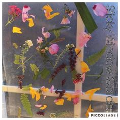 Sticky Window Garden {Last activity before Bree goes to bed. She used the scraps from B's cutting box and her flower deconstruction activities.  . . . . #natureart #natureplay #toddleractivities #toddleractivity #naturecraft #preschoolactivity #preschoolathome #preschoolwithmommy