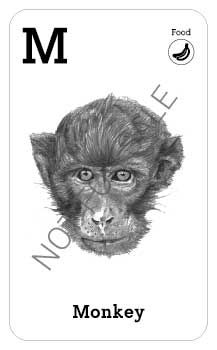 Animal Augmented Reality Alphabet Cards (A-Z) — Elsewhere Designs All Animals Photos, Monkey 2, Flashcards For Kids, 3d Mode, 1st Grade Worksheets, Alphabet Cards, Image List, Animal Cards, Monogram Logo