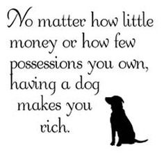 Dogs make you rich. truth