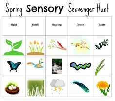 Free Spring Sensory Scavenger Search from More Fun, Mom!