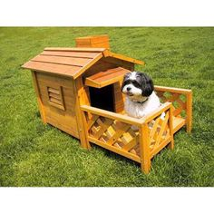 I love this doghouse. I'd get this if I had a dog. I bet my dog would love it! Maybe I's even play with my dog next to it! But I have to take care of my dog too. Someday I'll get one but I barley have any money. I  have tons of coins tho.