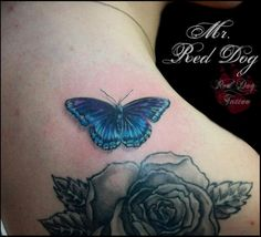 Bluw Butterfly - 50+ Amazing Butterfly Tattoo Designs | Art and Design