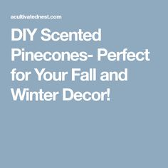 DIY Scented Pinecones- Perfect for Your Fall and Winter Decor!