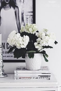 "Hortensia // <a href=""http://Lifestyleandliving.se"" rel=""nofollow"" target=""_blank"">Lifestyleandlivin...</a>"