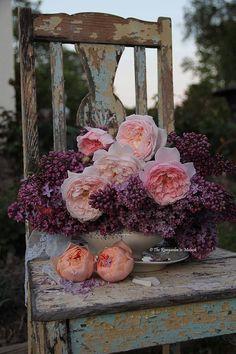 Beautiful flowers on rustic chair                                      Tumblr