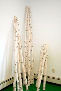 8 Foot Decorative Birch Poles 4 Poles  1.5  door WilsonEvergreens