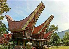 Rumah adat tongkonan = sulawesi selatan