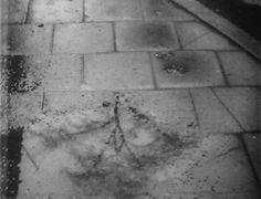 Rain (Joris Ivens, 1929)