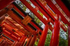 1000 Torii- Gates Kyoto Japan #PatrickBorgenMD