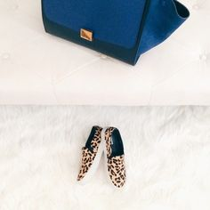 Instagram photo by @simplyxclassic, celine trapeze bag, leopard shoes, simplyxclassic