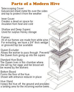 Bee Keeping modern hive guide if only I can talk my hubby into letting me get a new pet..or a few hundred... :)
